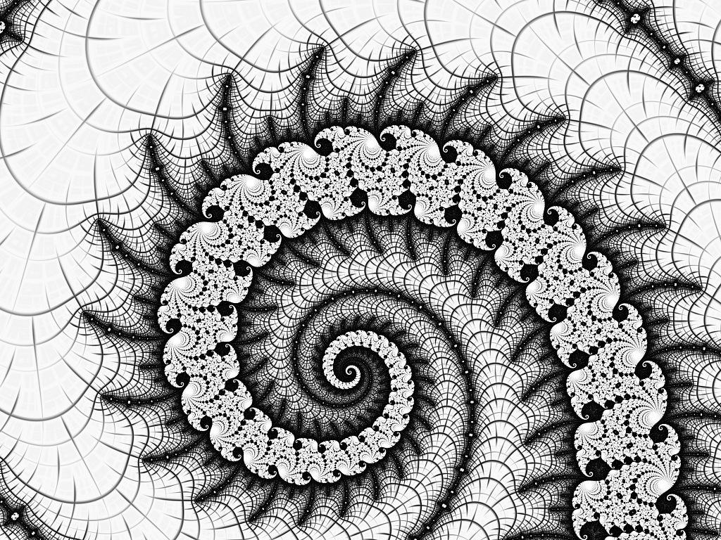 Spiral net