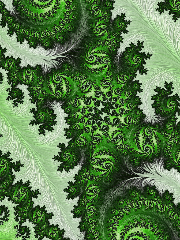 Deep in the Fractal Jungle